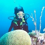 Diving South Water Caye