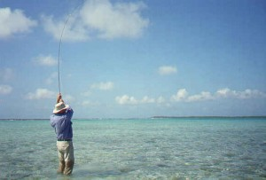 Fly Fishing in Placencia Belize