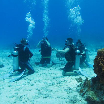 PADI Open Water Certification Course | Placencia Belize | Seahorse ...