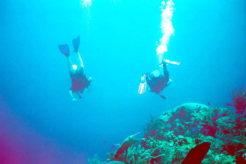 Scuba Diving Glover's Reef